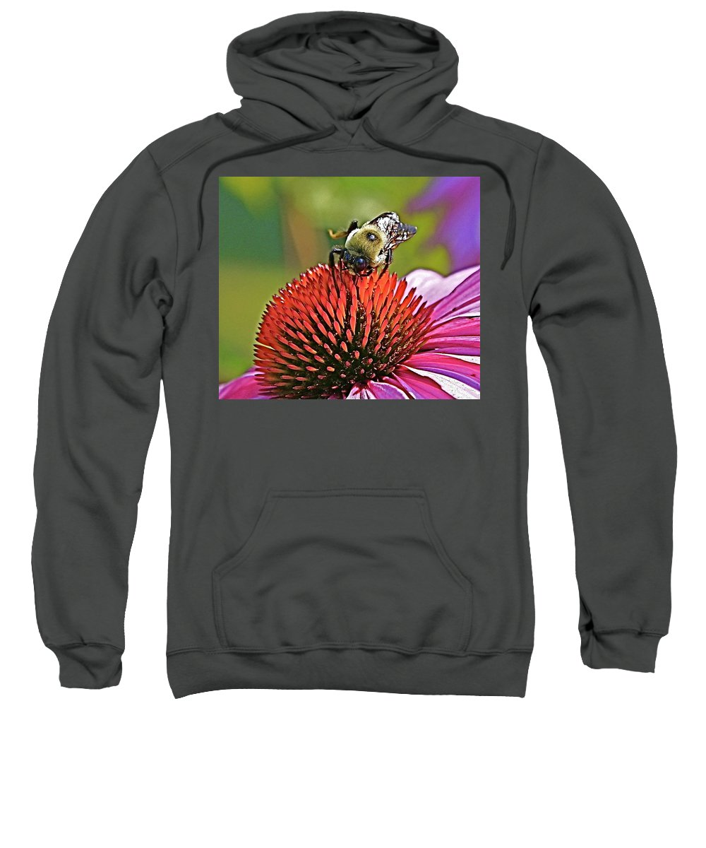 Bee Sweatshirt featuring the photograph Beware by Robert Pearson