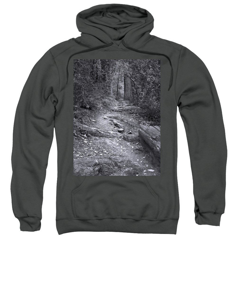 Landscape Sweatshirt featuring the photograph Big Basin Redwoods Sp 1 by Karen W Meyer