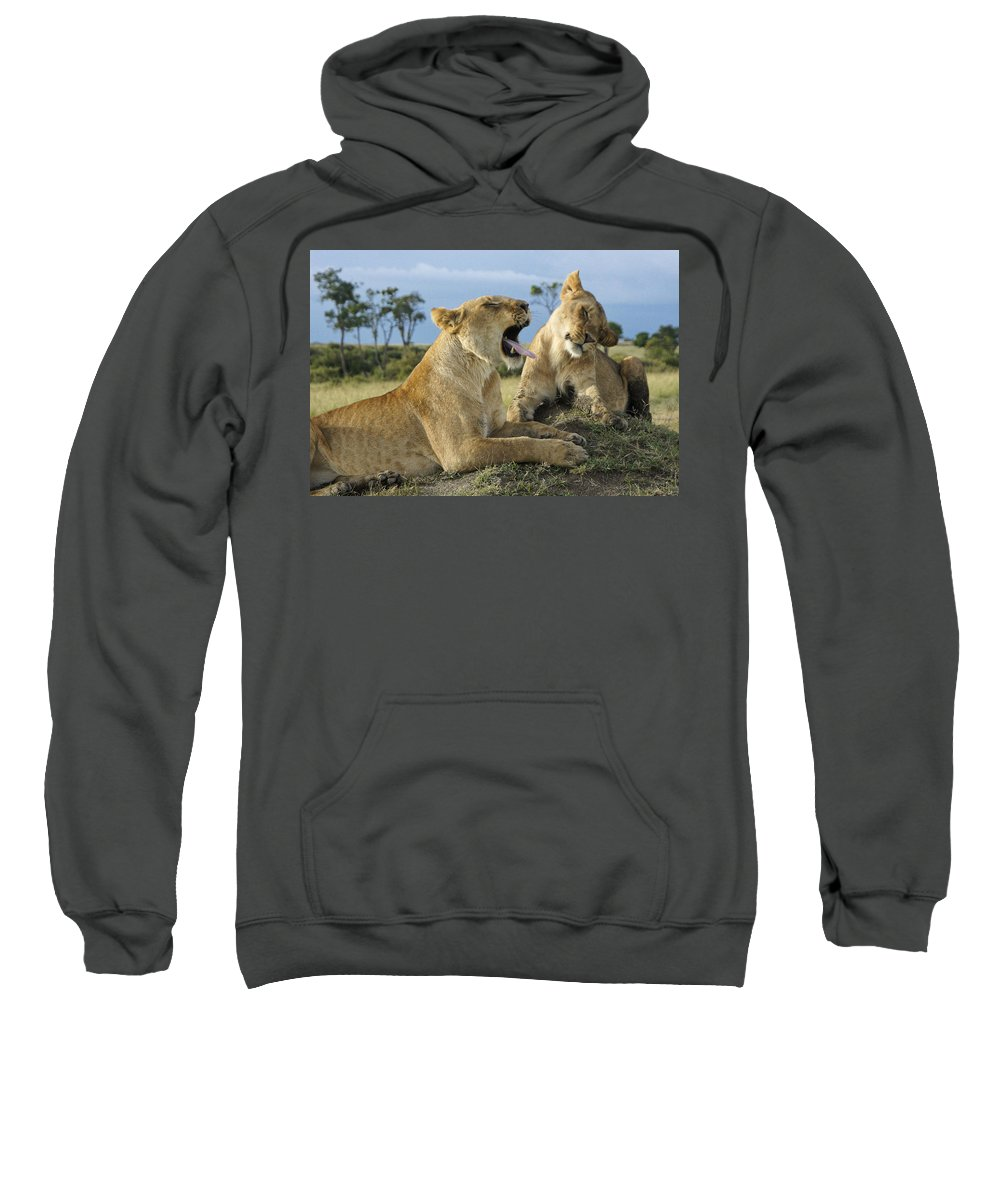 Africa Sweatshirt featuring the photograph Big Blast by Michele Burgess