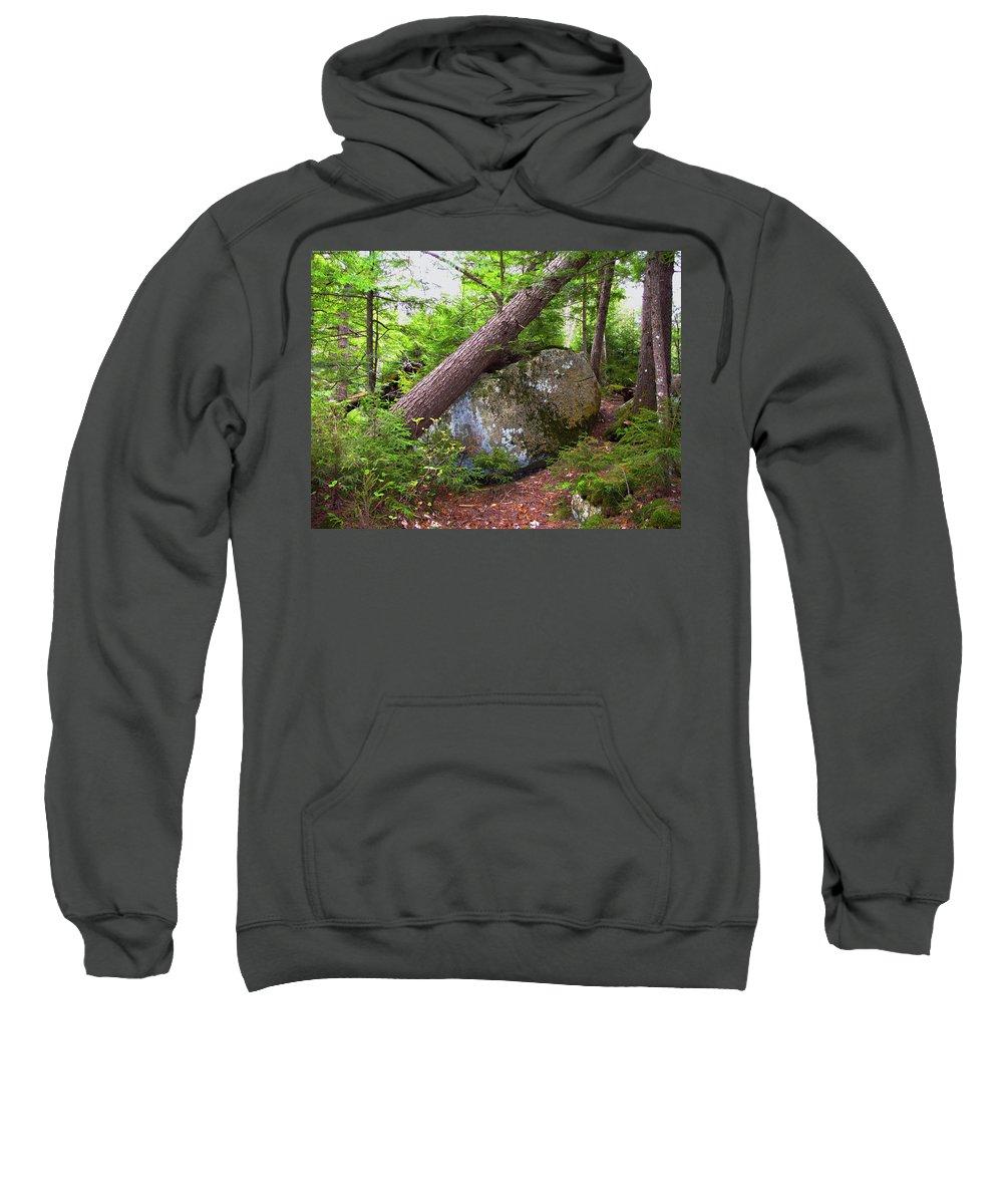 Trees Sweatshirt featuring the photograph Big Rock by Denise Keegan Frawley