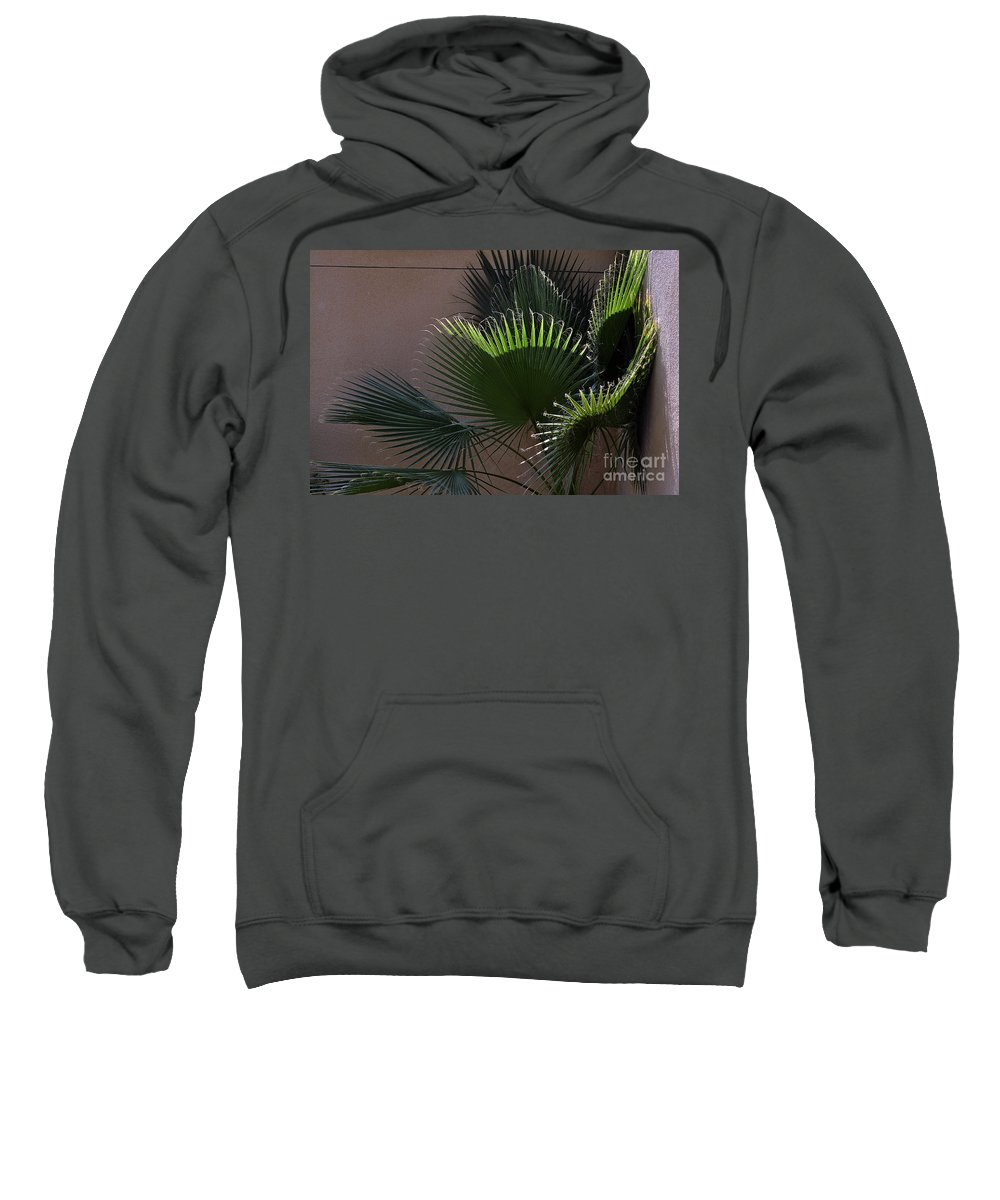 Clay Sweatshirt featuring the photograph Biggest Fans by Clayton Bruster