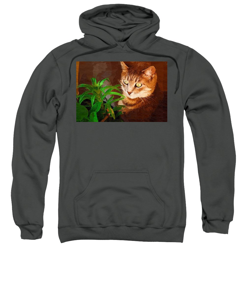 Cat Sweatshirt featuring the photograph Bink by Donna Bentley