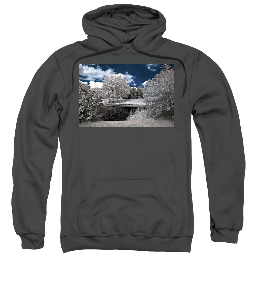Landscape Sweatshirt featuring the photograph Birch Cluster II by Steve Harrington