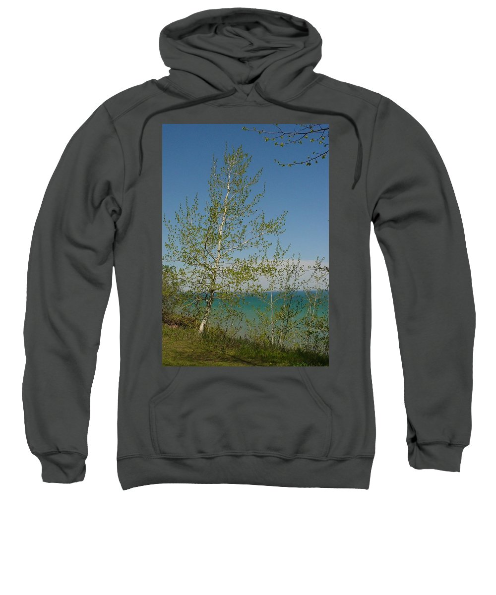 Birch Tree Sweatshirt featuring the photograph Birch Tree Over Lake by Anita Burgermeister