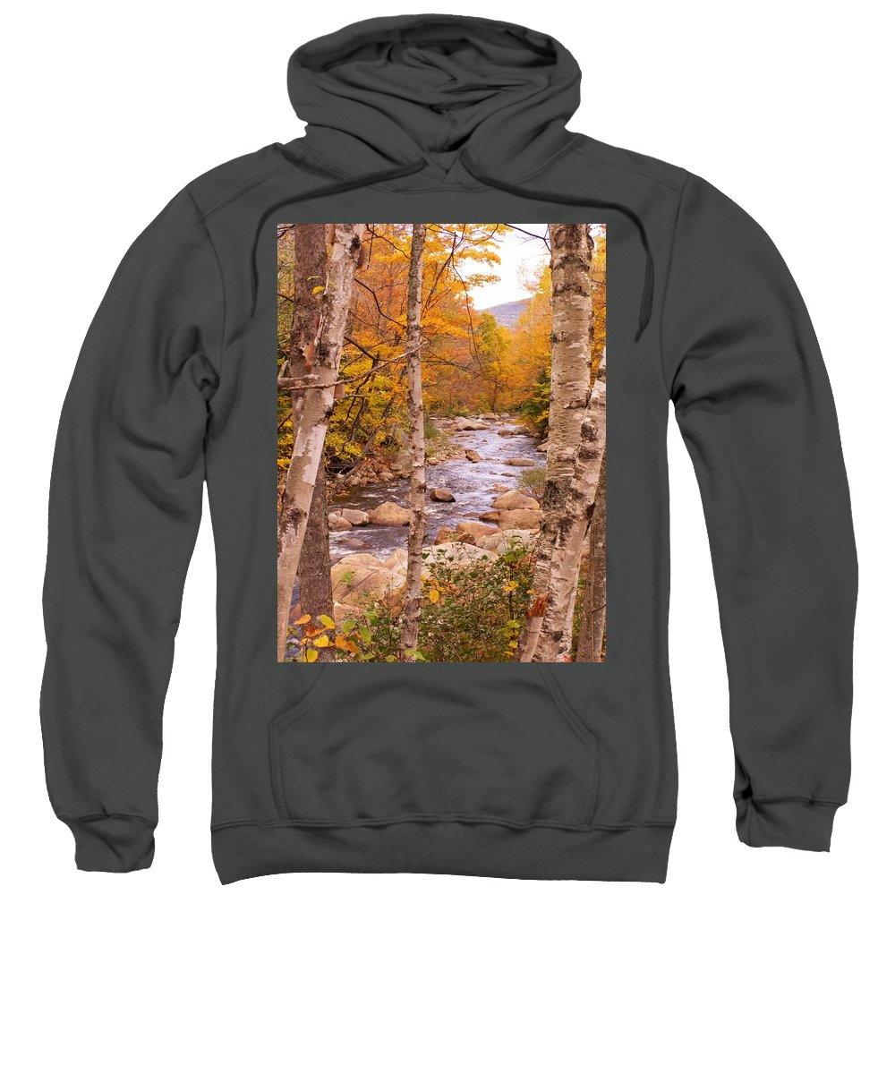 Landscape Sweatshirt featuring the photograph Birches On The Kancamagus Highway by Nancy Griswold