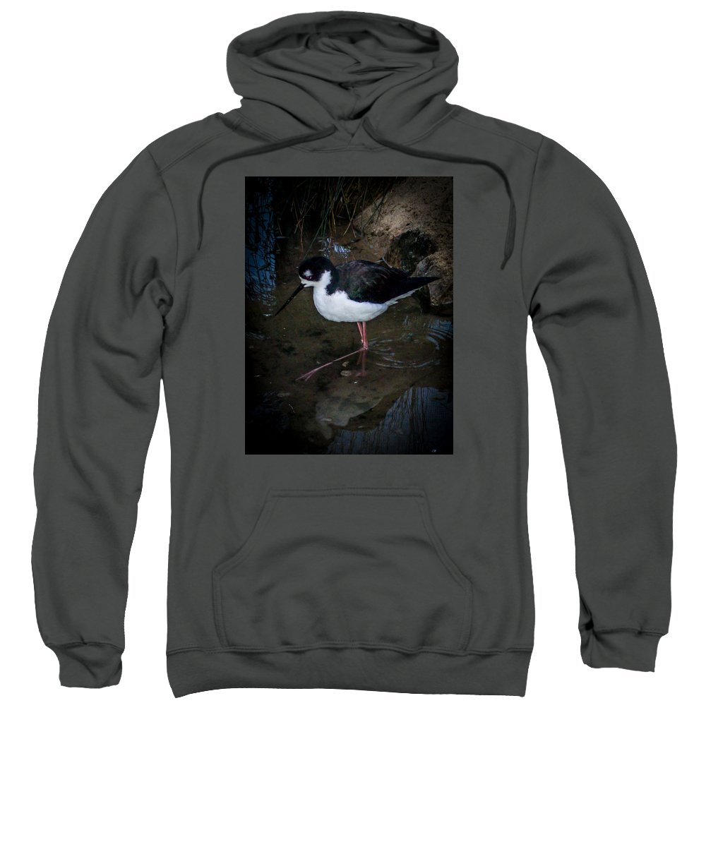 Sweatshirt featuring the photograph Bird 2 by Reed Tim