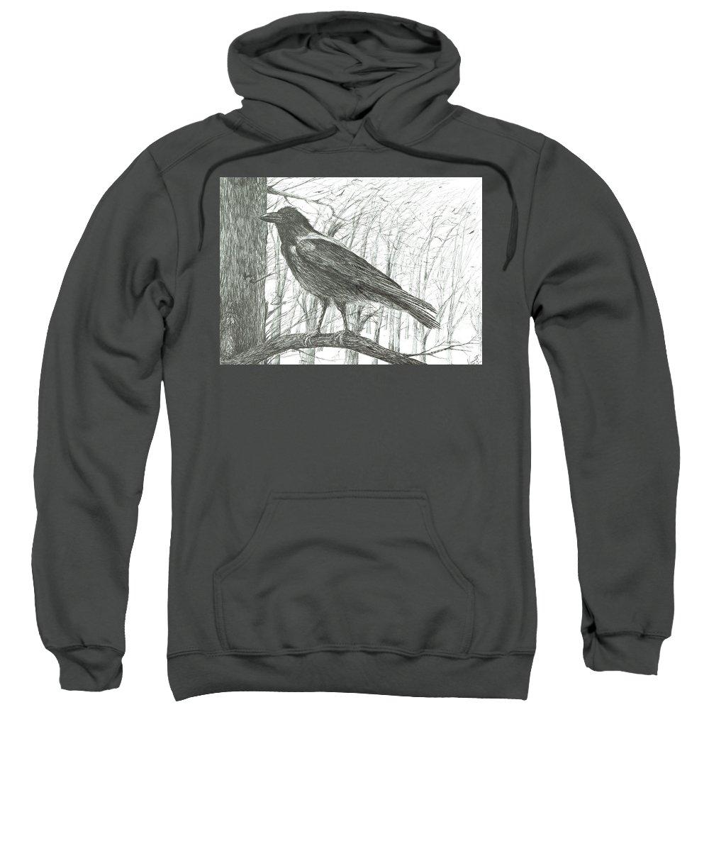 Bird Sweatshirt featuring the drawing Bird, 2011 by Vincent Alexander Booth