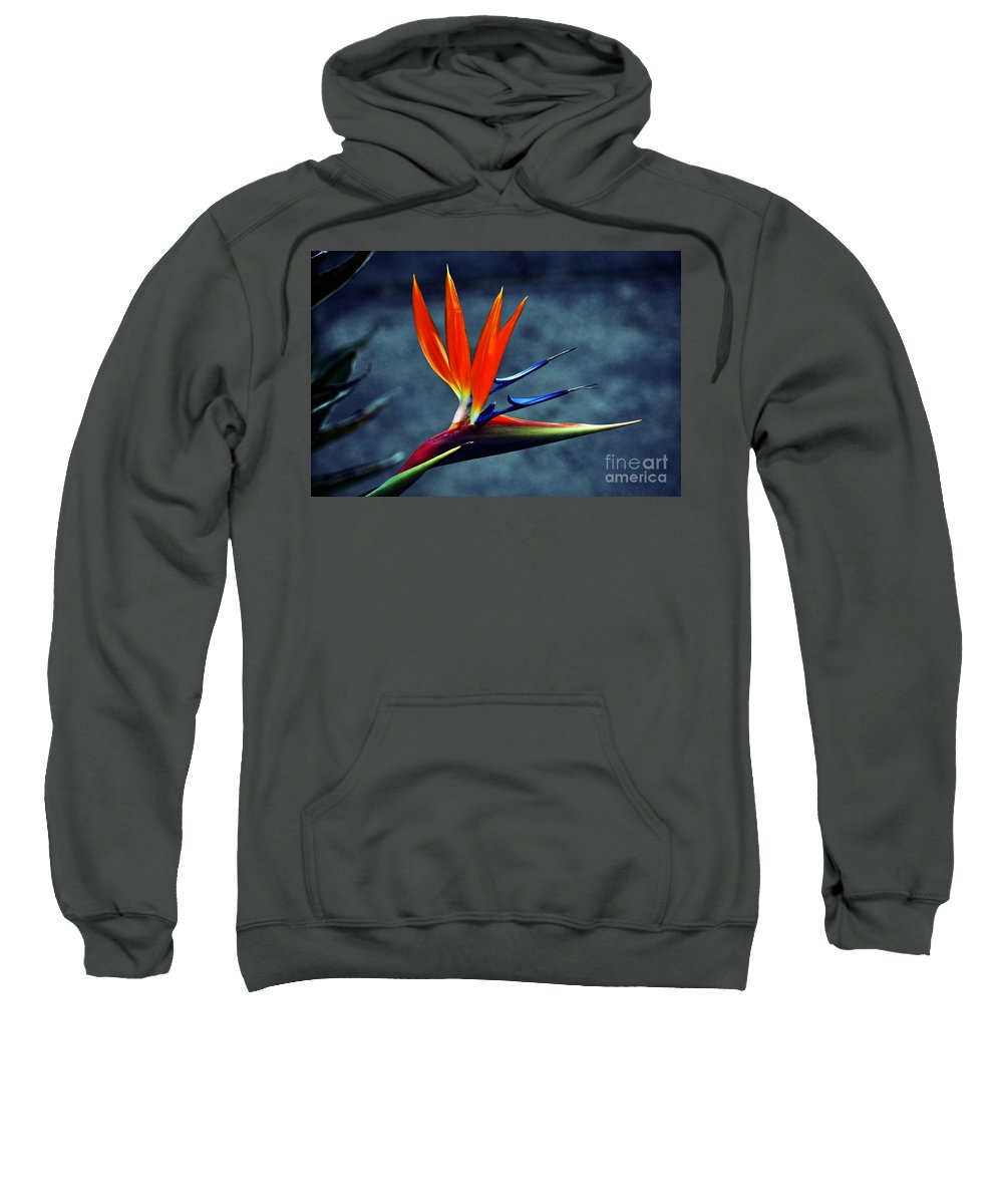 Clay Sweatshirt featuring the photograph Bird Of Paradise by Clayton Bruster