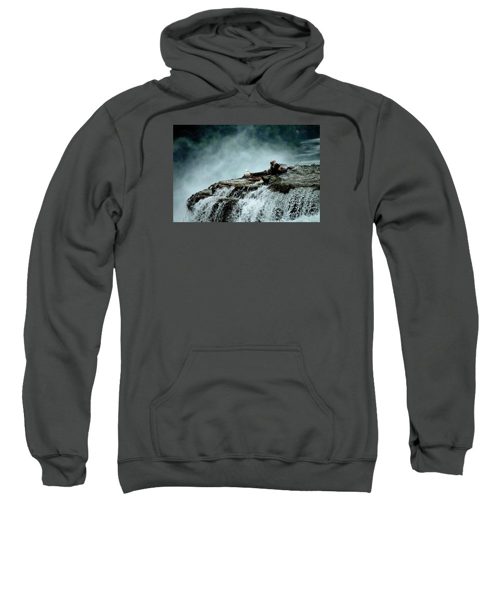 Birds View Sweatshirt featuring the photograph Birds View by Charles J Pfohl