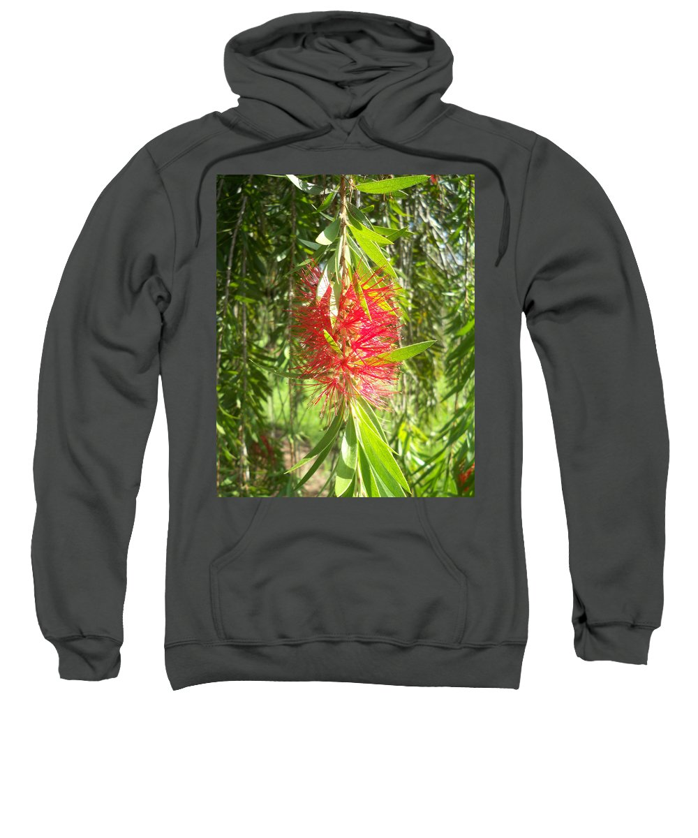 Florida Sweatshirt featuring the photograph Bittersweet Bloom I by Chris Andruskiewicz