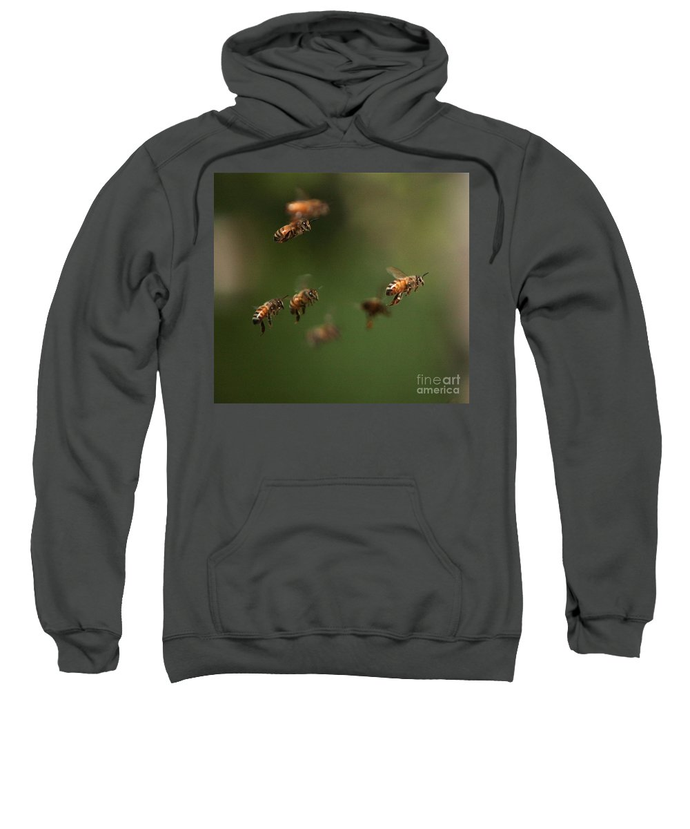 Bee Sweatshirt featuring the photograph Bizzzzzzz by Robert Pearson