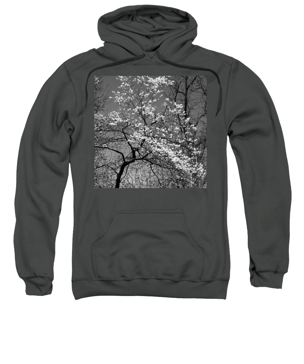 Tree Sweatshirt featuring the photograph Black And White Blossoms by Phill Doherty