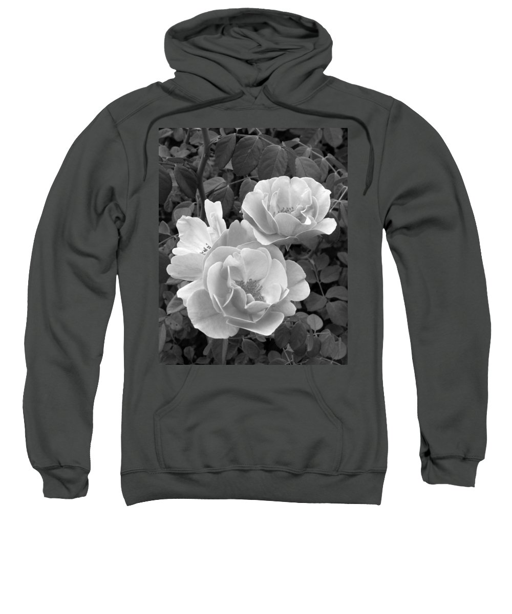 Rose Sweatshirt featuring the photograph Black And White Roses 1 by Amy Fose