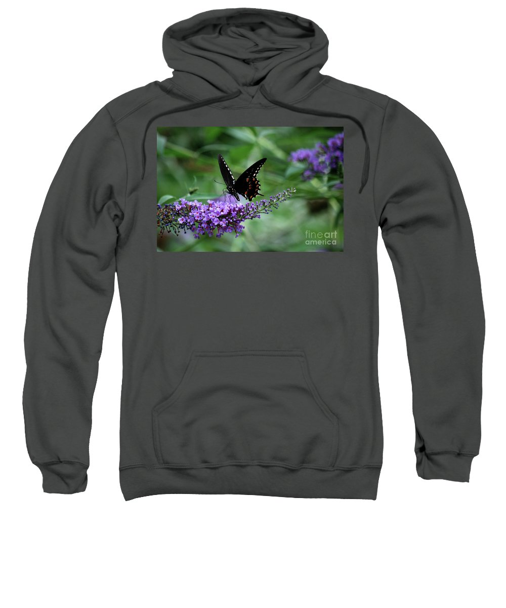 Butterfly Sweatshirt featuring the photograph Black Butter by Lori Tambakis