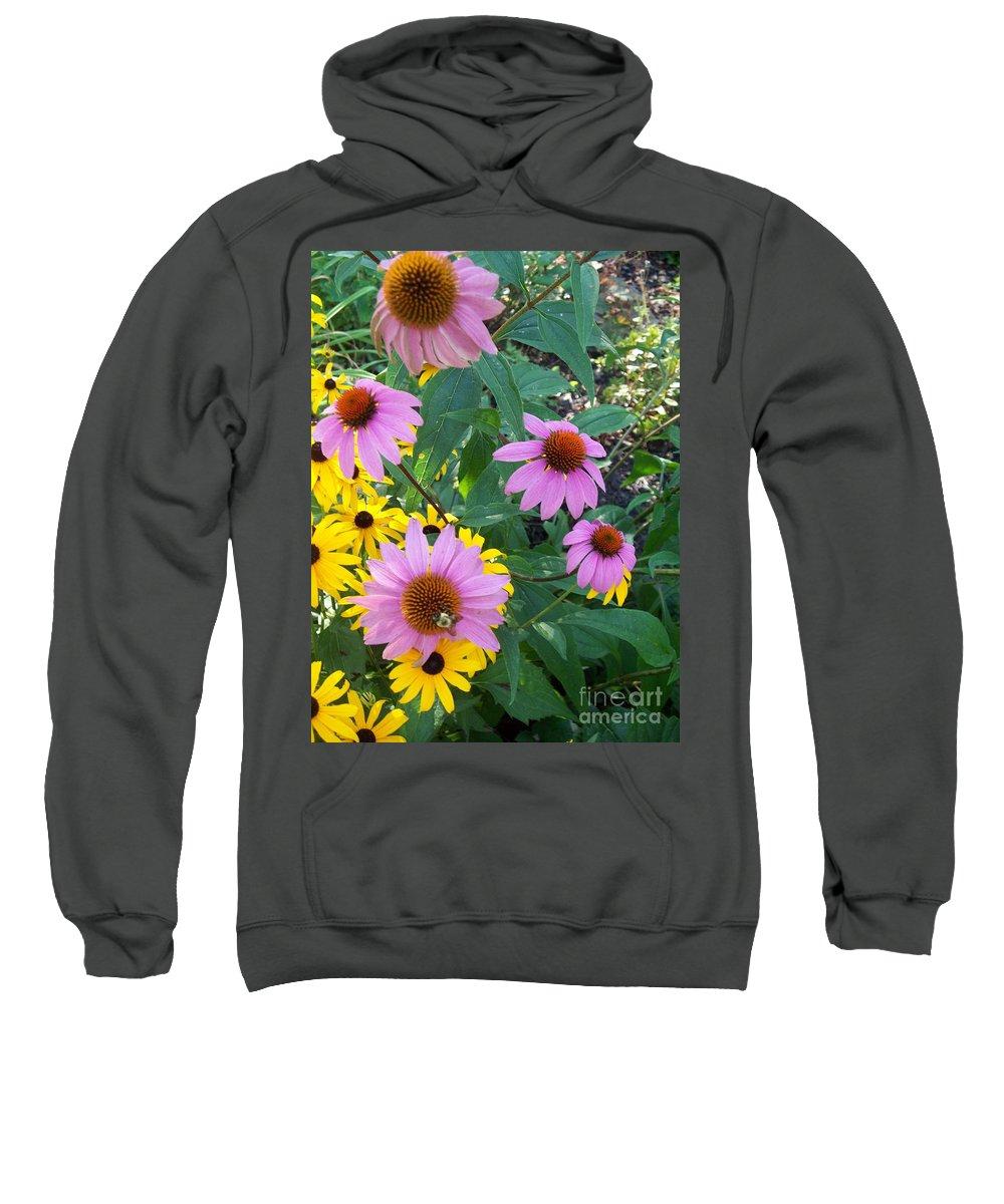 Black Eyesusans Sweatshirt featuring the painting Black Eye Susans And Echinacea by Eric Schiabor