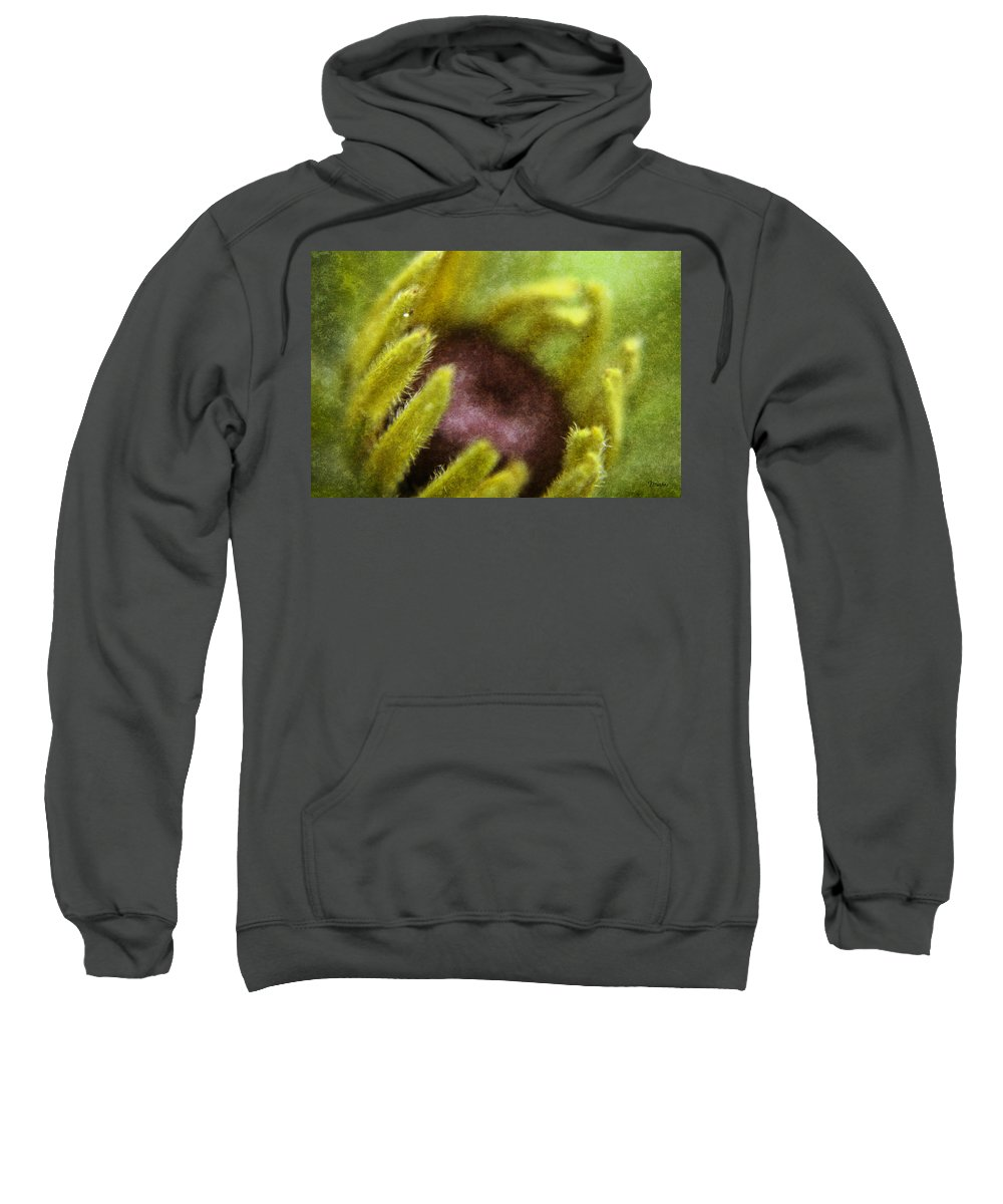 Black Sweatshirt featuring the digital art Black Eyed Susan Visitor by Teresa Mucha