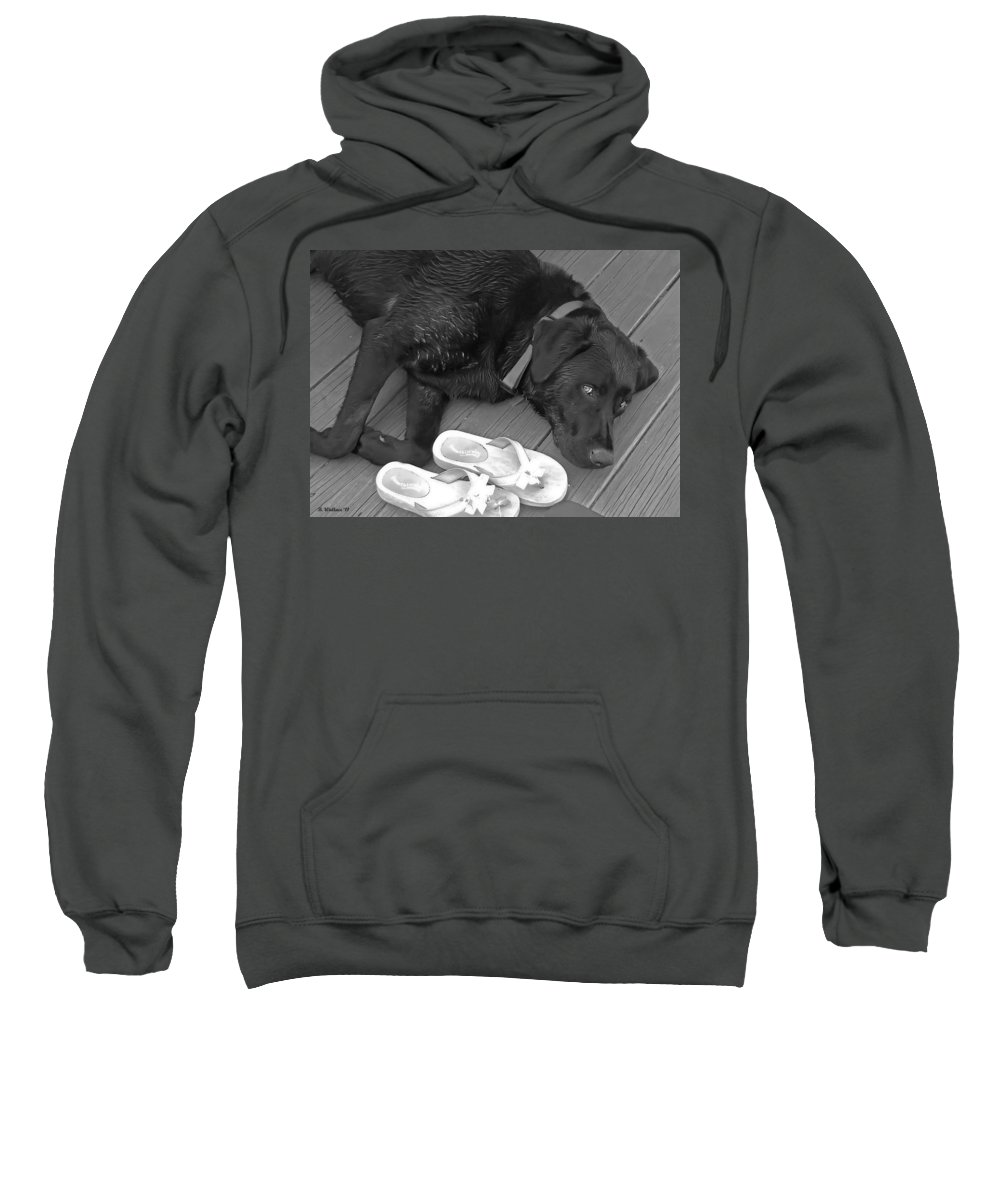 2d Sweatshirt featuring the photograph Black Lab by Brian Wallace