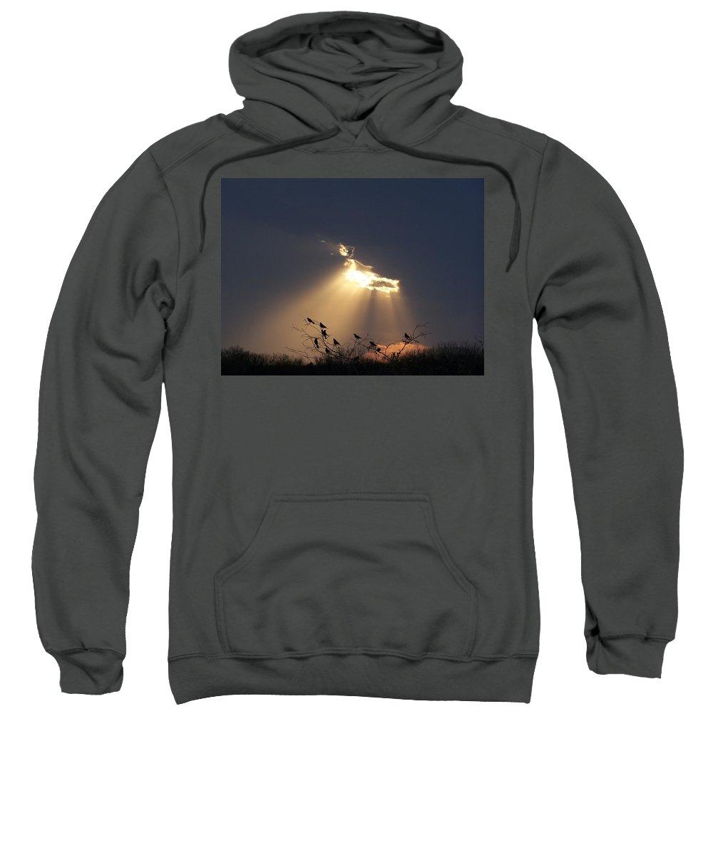 Storm Sweatshirt featuring the photograph Blackbird Sky by Gale Cochran-Smith