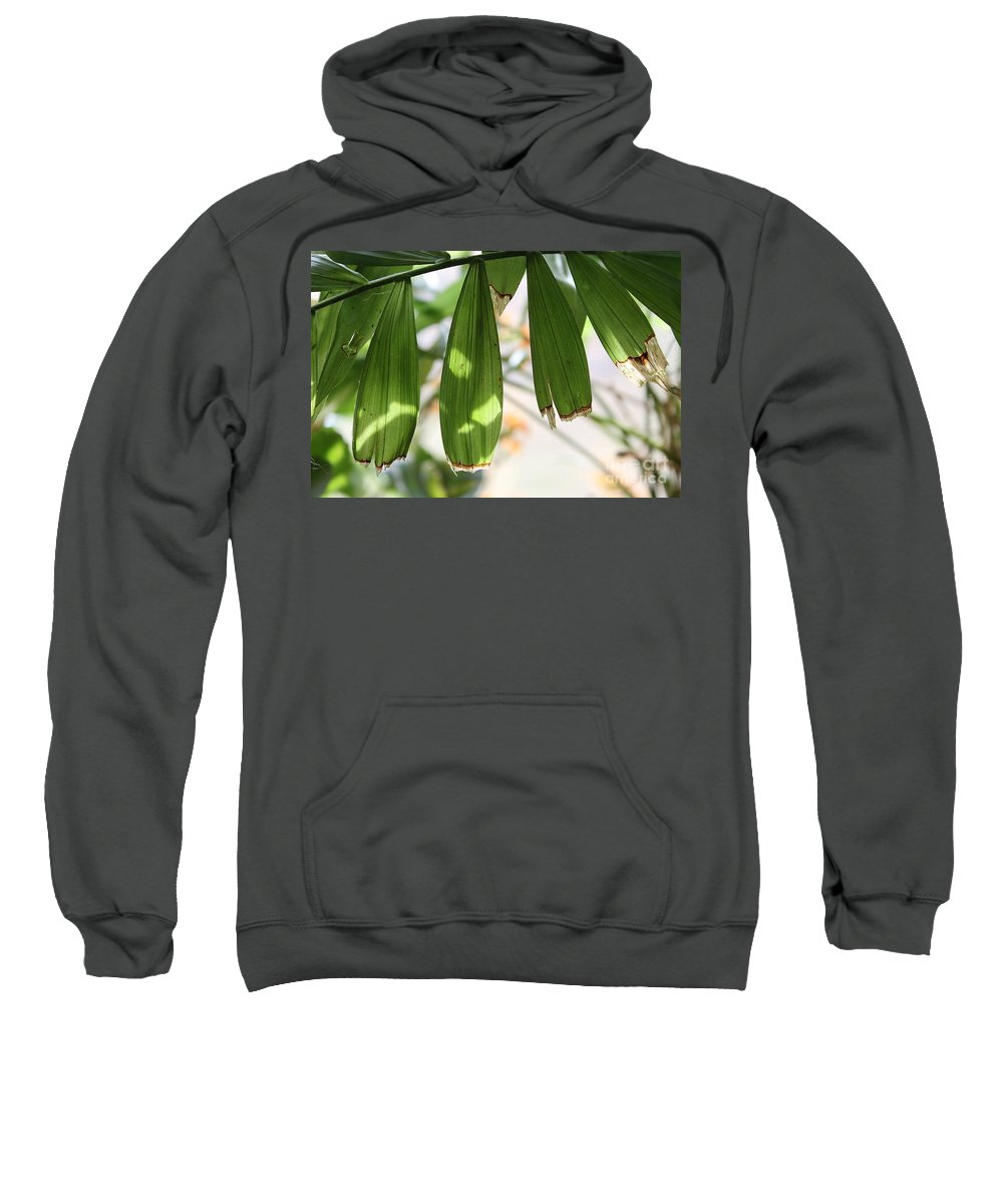 Nature Sweatshirt featuring the photograph Blades by Todd Blanchard