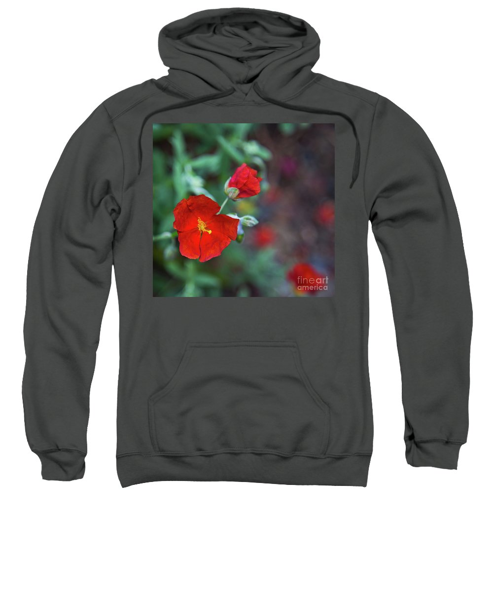 Red Flowers Sweatshirt featuring the photograph Bleeding Spring by Alex Art and Photo