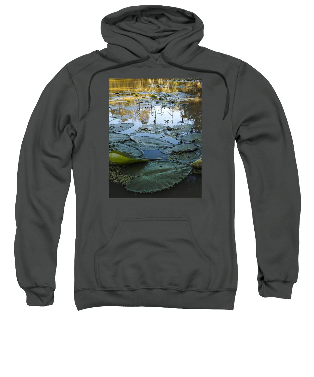 Louisiana Wetlands Sweatshirt featuring the photograph Blind River-4 Pm-september '15 by Richard Waller