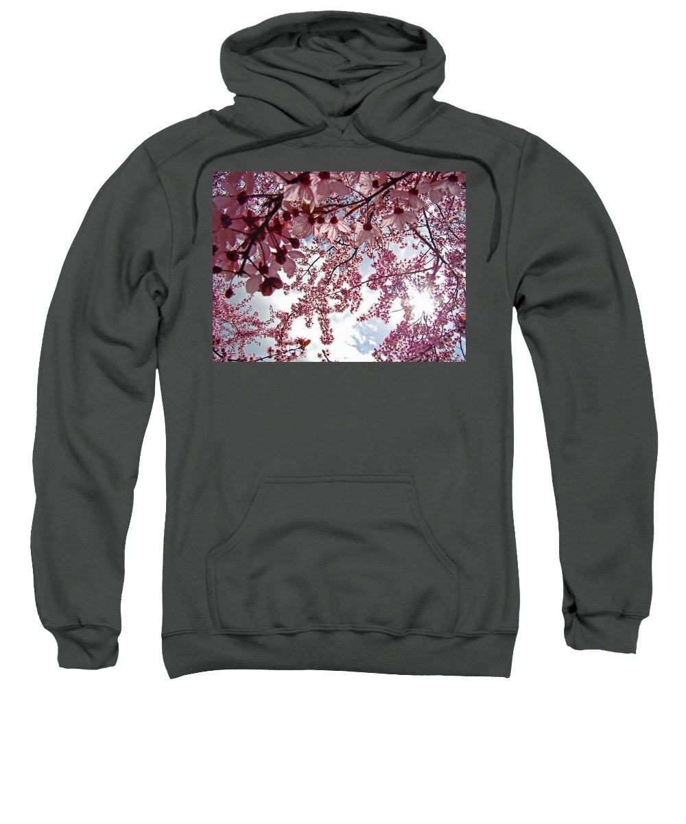 Tree Sweatshirt featuring the photograph Blossom Artwork Spring Flowers Art Prints Giclee by Baslee Troutman