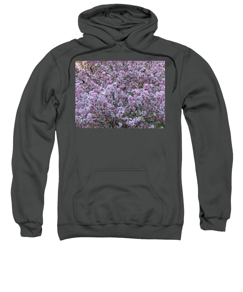 Crabapple Tree Sweatshirt featuring the photograph Blossom Tree by MTBobbins Photography