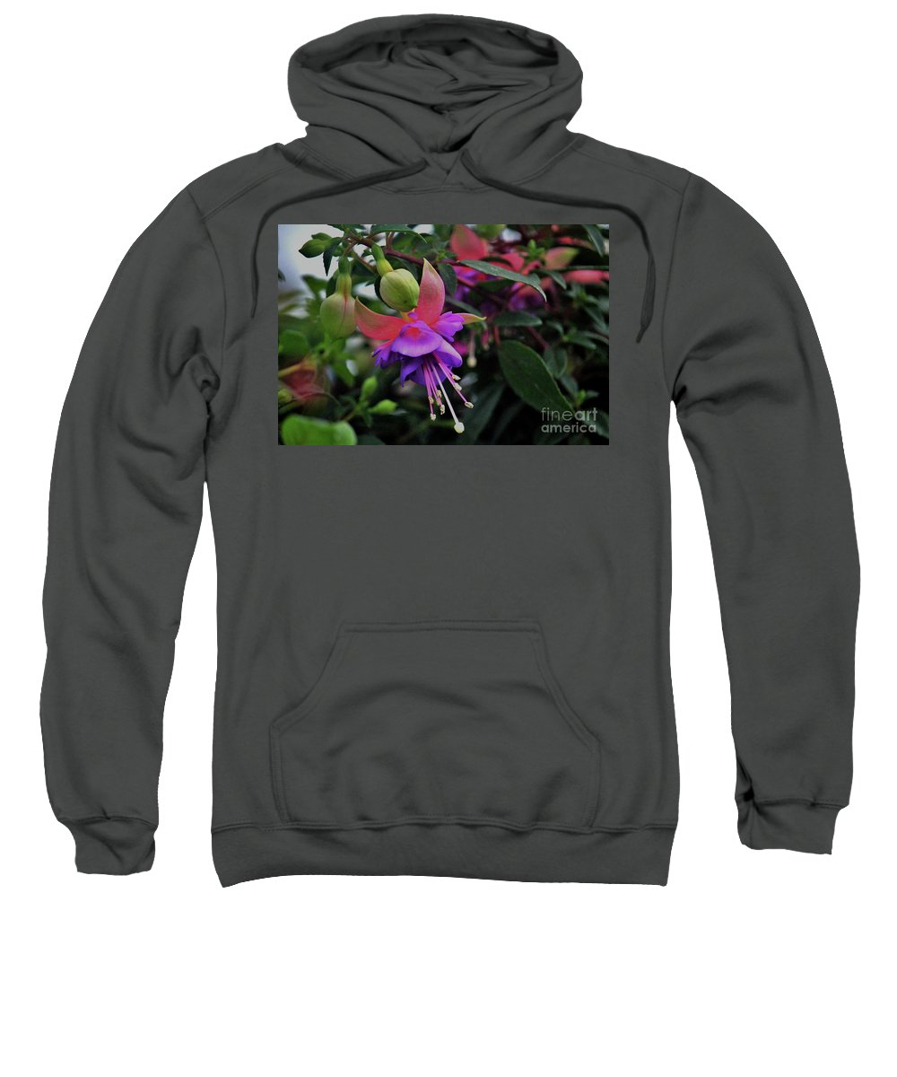 Spring Sweatshirt featuring the photograph Blossoms And Blooms by Laura Birr Brown