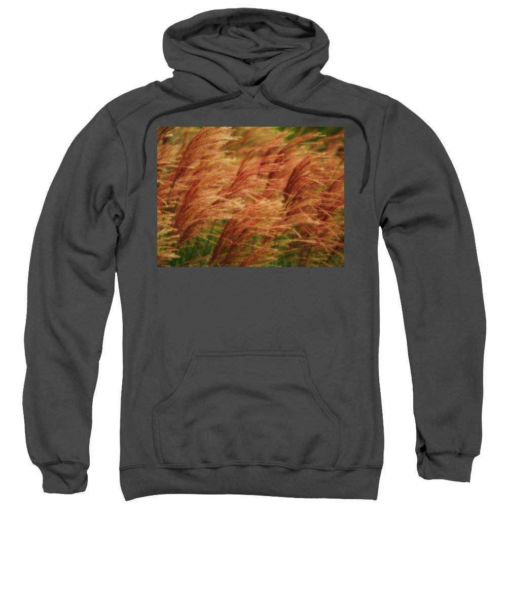 Win Sweatshirt featuring the photograph Blowing In The Wind by Gaby Swanson