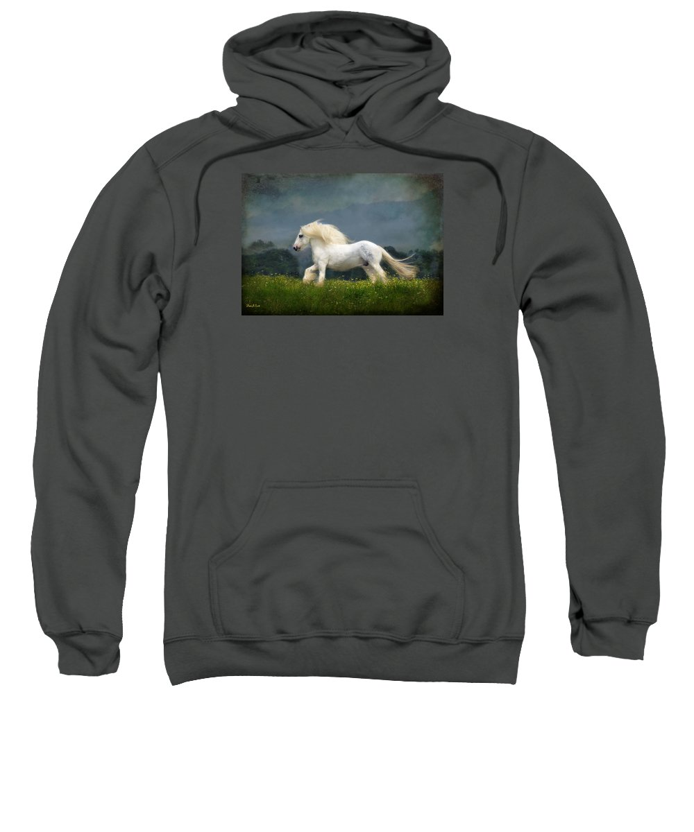 Horses Sweatshirt featuring the photograph Blue Billy C1 by Fran J Scott