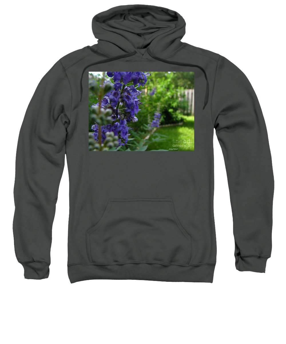 Art For The Wall...patzer Photography Sweatshirt featuring the photograph Blue Butterfly by Greg Patzer