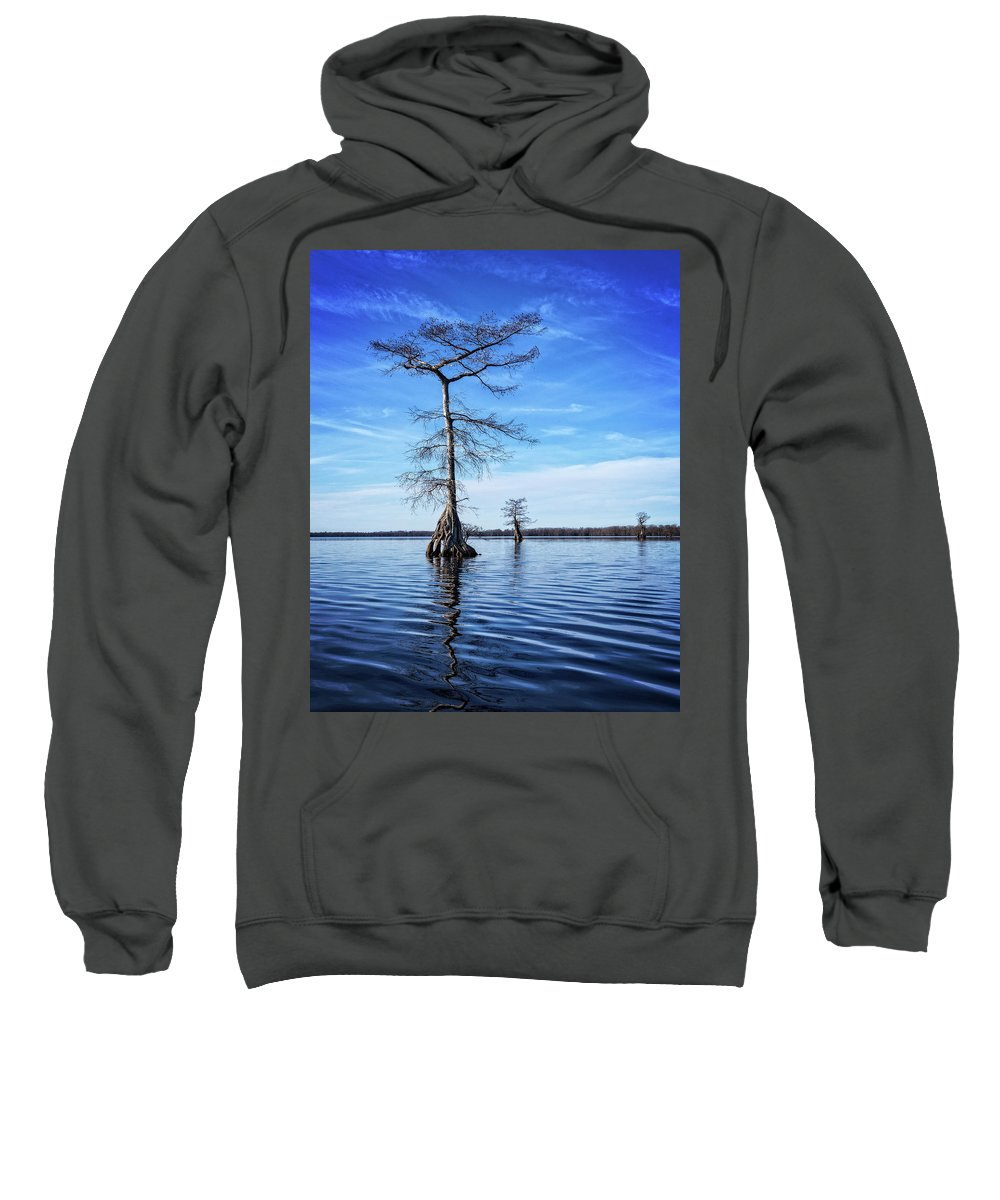 Tree Sweatshirt featuring the photograph Blue Cypress by Alan Raasch