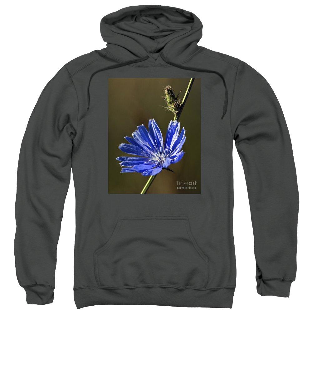Flower Sweatshirt featuring the photograph Blue Dream.. by Nina Stavlund