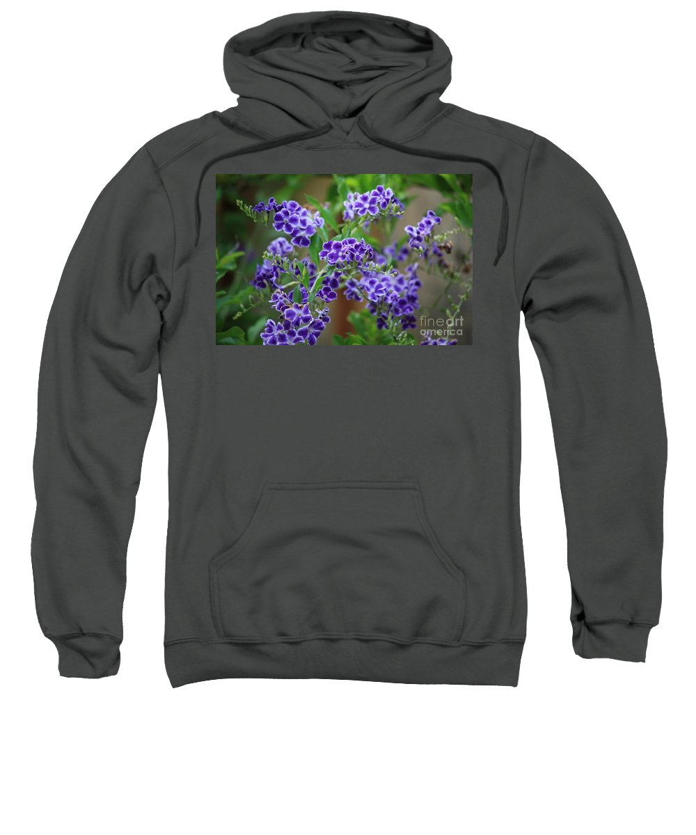 Greeting Card Sweatshirt featuring the greeting card Blue Flowers Card by Carol Groenen