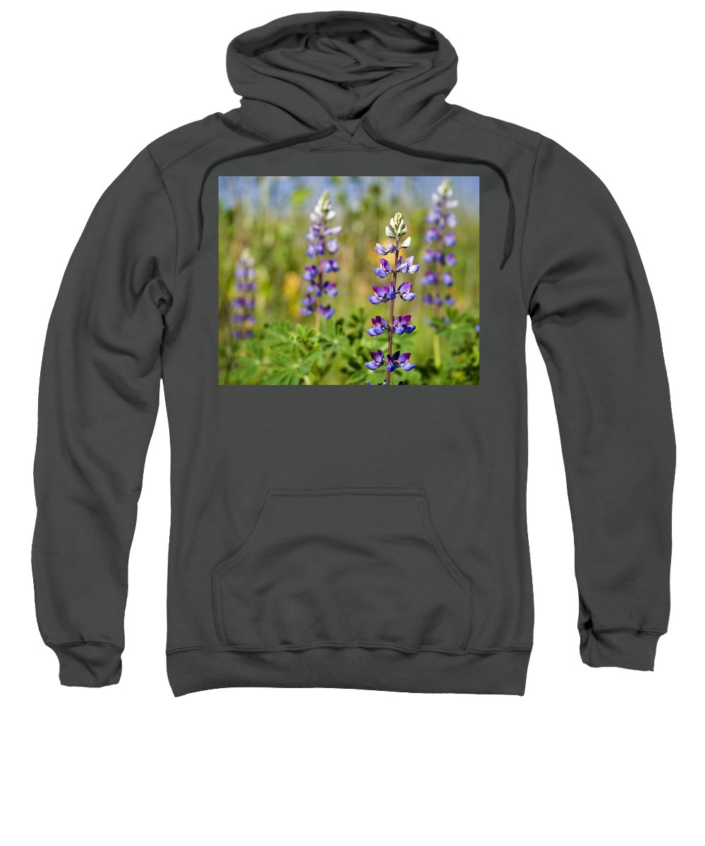 Flowers Sweatshirt featuring the photograph Blue Flowers by Kelley King