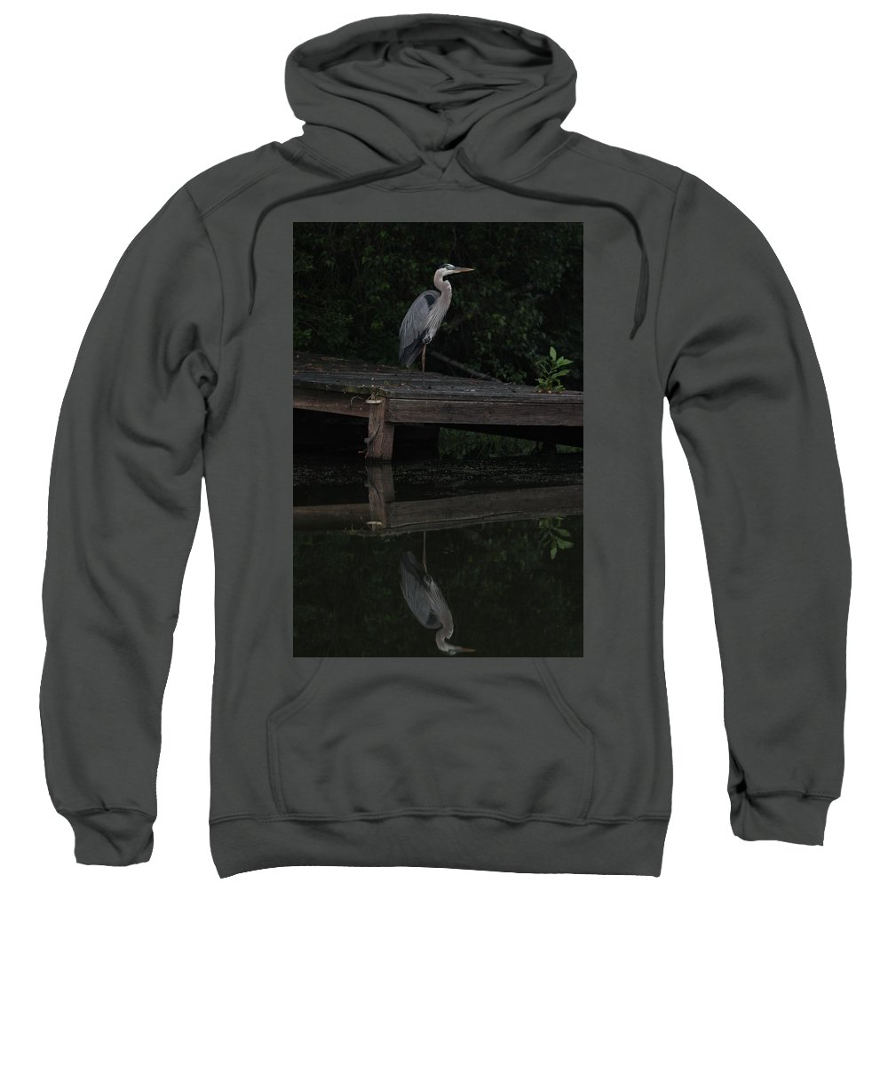 Blue Heron Sweatshirt featuring the photograph Blue Heron At Dusk by Kathleen Moore Lutz