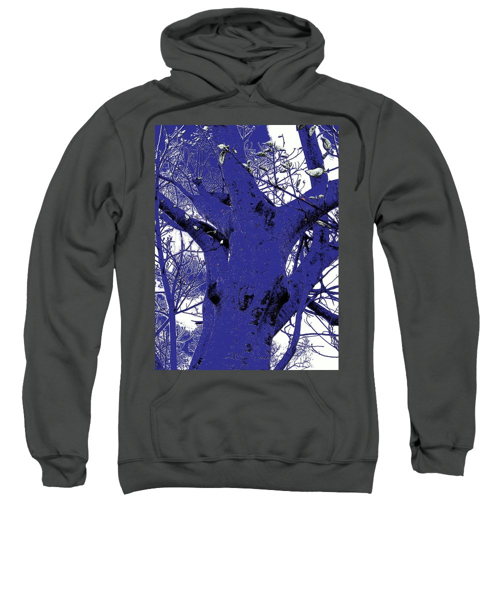 Landscape Sweatshirt featuring the photograph Blue Ice by Ed Smith