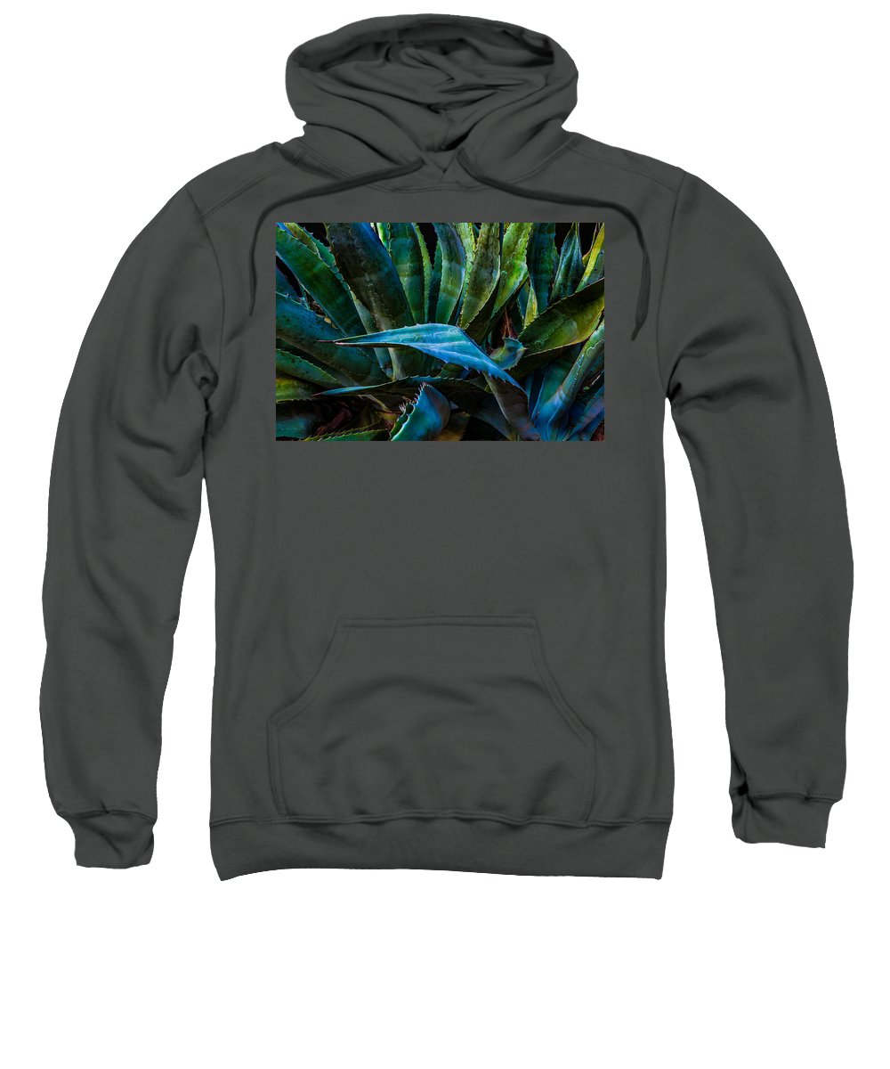 Califonia Sweatshirt featuring the photograph Blue Jay Agave by Ken Dugan