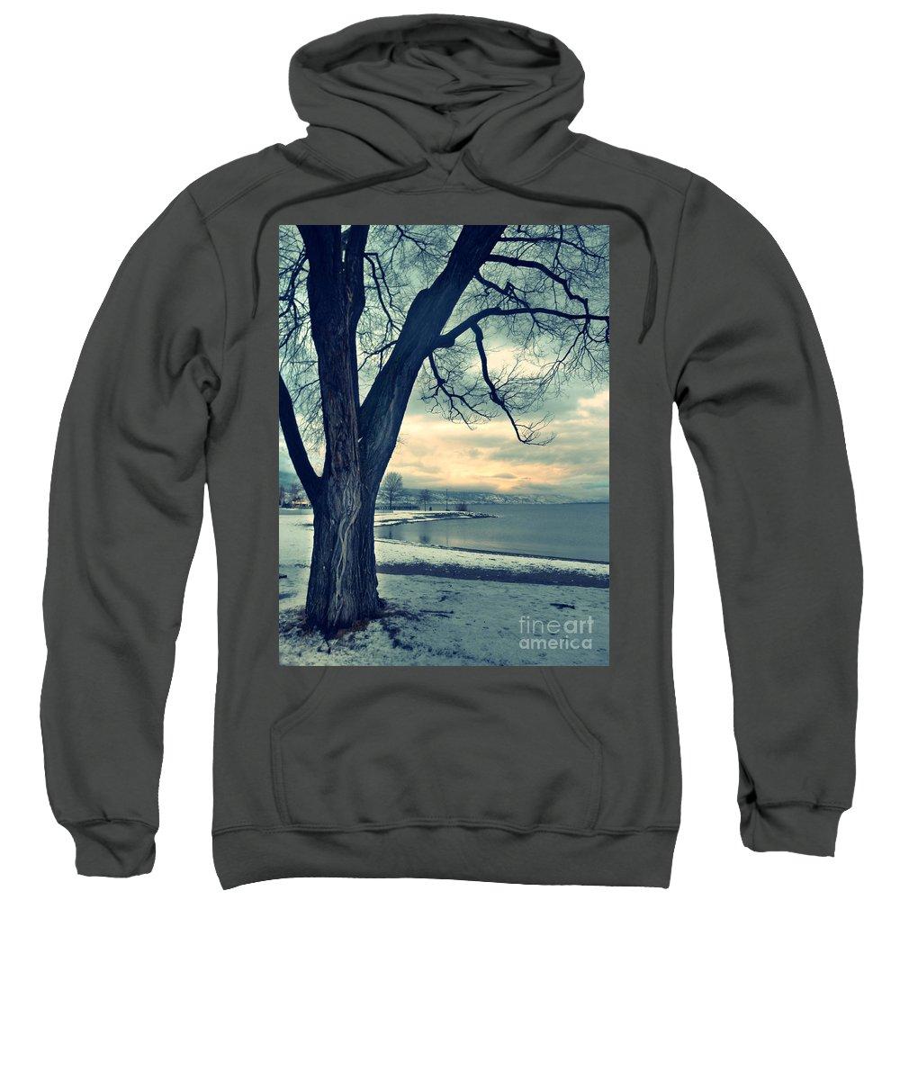 Tree Sweatshirt featuring the photograph Blue Morning by Tara Turner