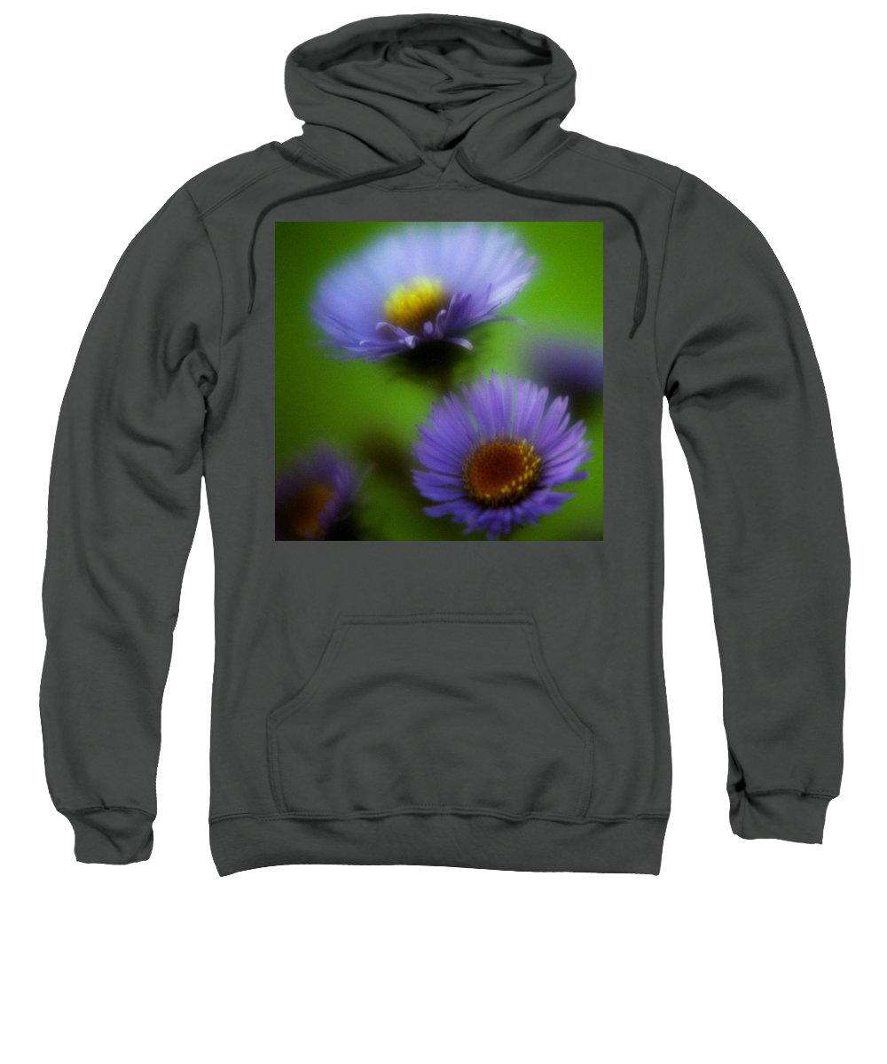 Macrophotography Sweatshirt featuring the photograph Blue On Green 2 by Lee Santa