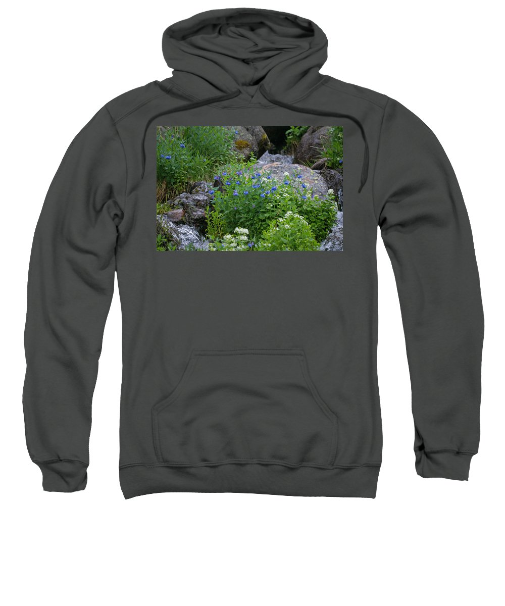 Wildflowers Sweatshirt featuring the photograph Bluebells by Heather Coen