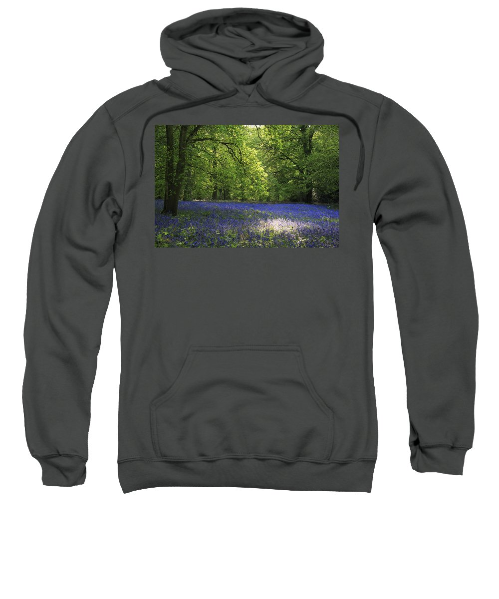 Bluebells Sweatshirt featuring the photograph Bluebells by Phil Crean