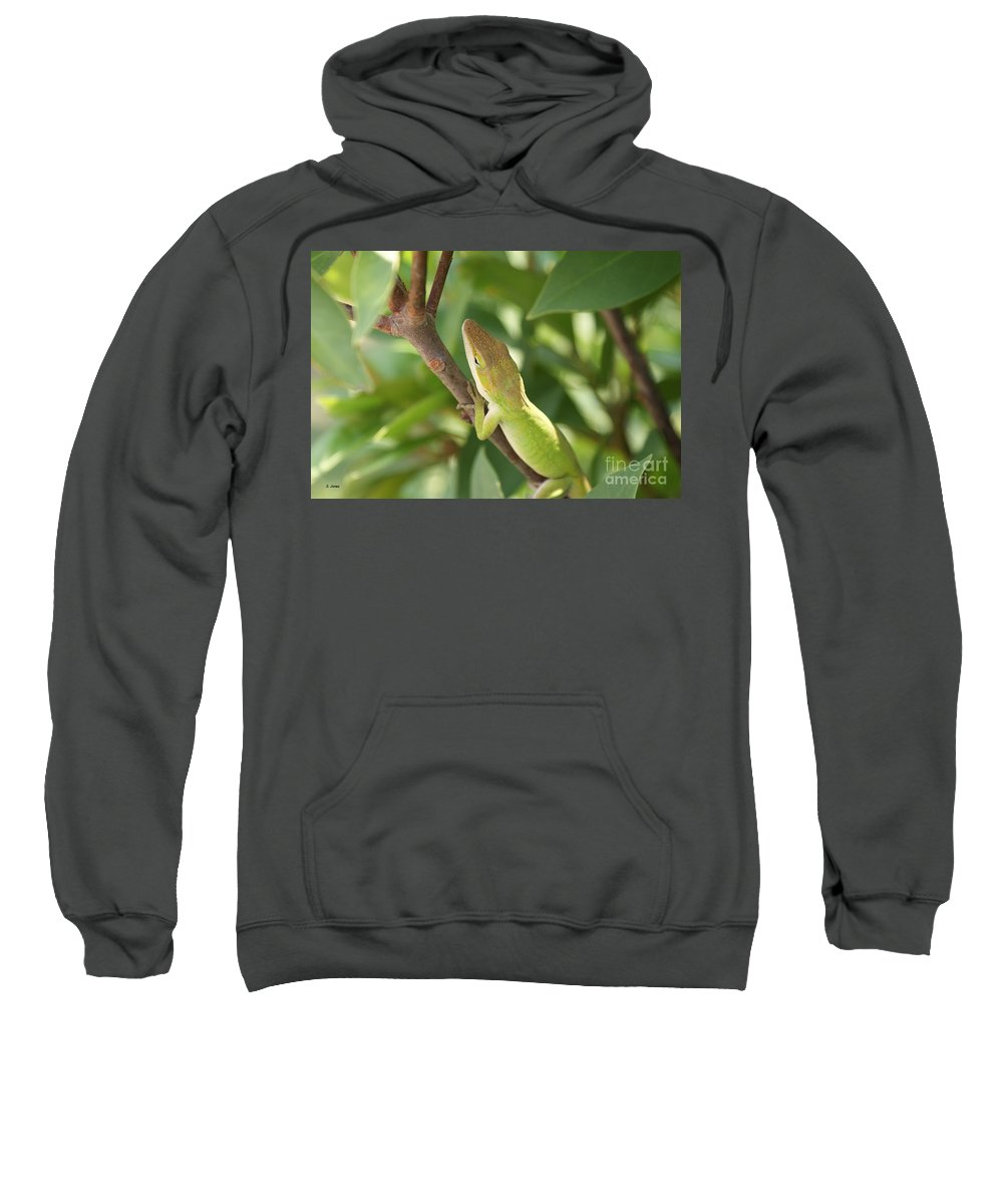 Lizard Sweatshirt featuring the photograph Blusing Lizard by Shelley Jones