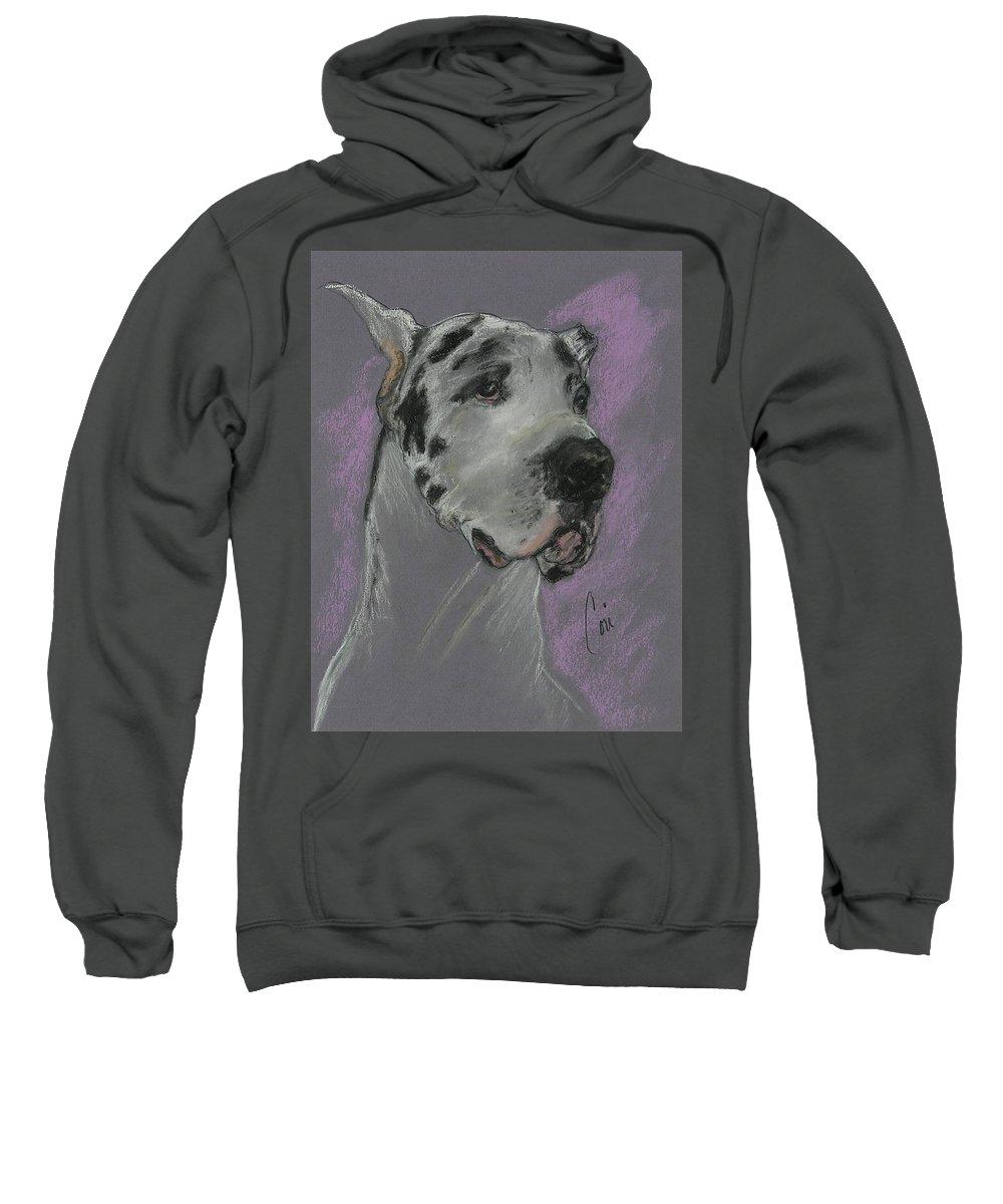 Great Dane Sweatshirt featuring the drawing Bodhi's Mystique by Cori Solomon