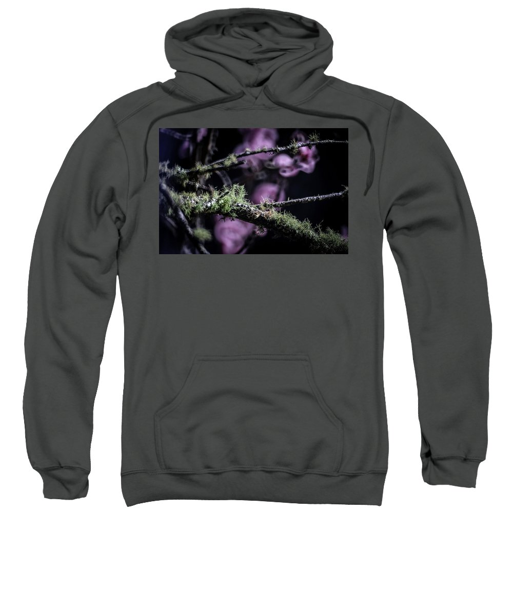 Nature Sweatshirt featuring the photograph Bokeh by Farzin Fardin