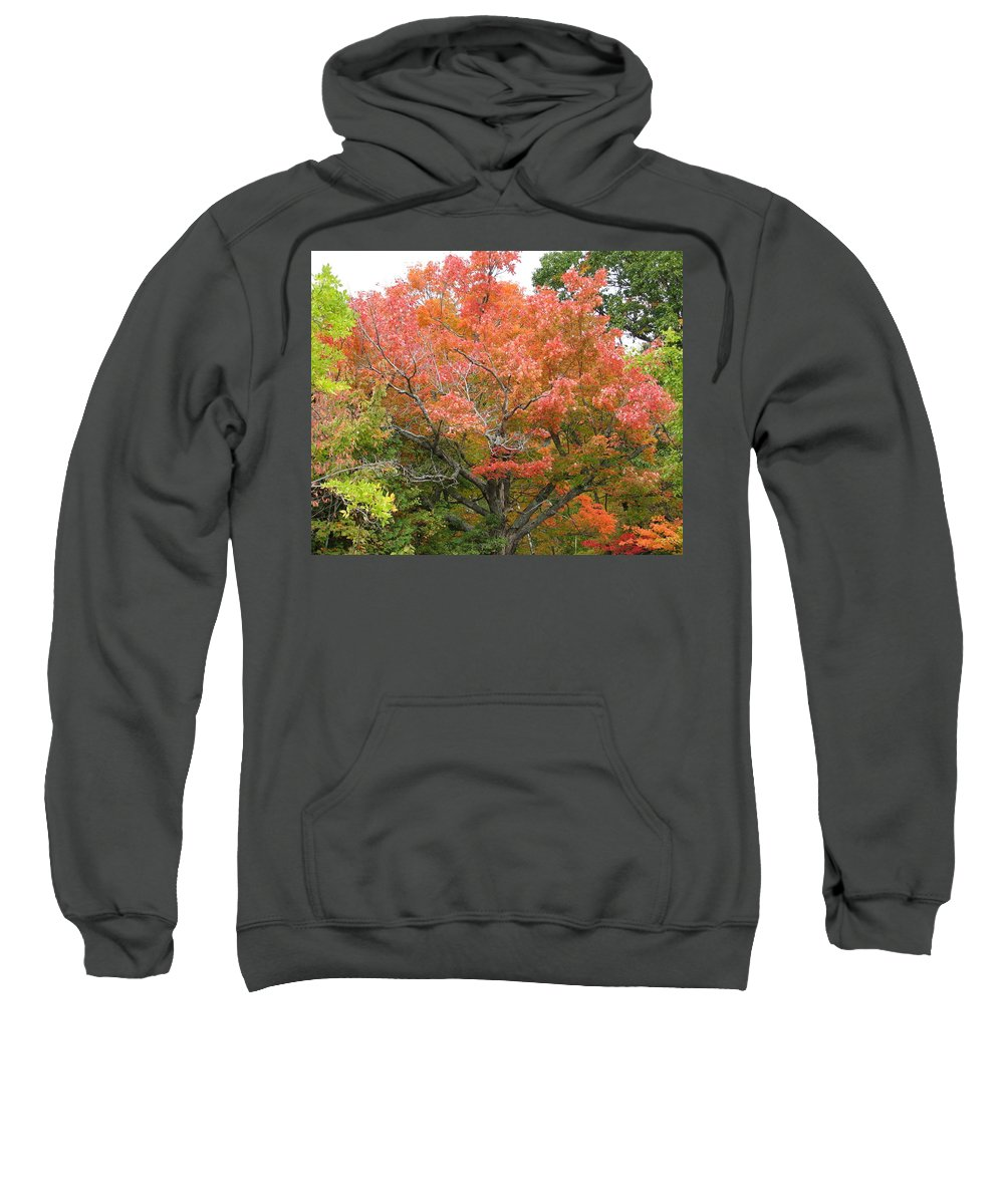 Fall Sweatshirt featuring the photograph Bonfire by Kelly Mezzapelle