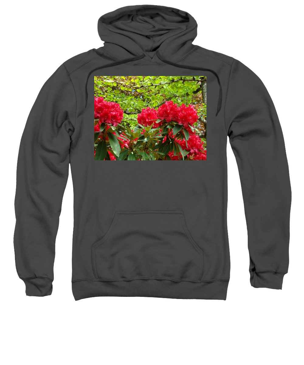 Rhodies Sweatshirt featuring the photograph Botanical Garden Art Prints Red Rhodies Trees Baslee Troutman by Baslee Troutman