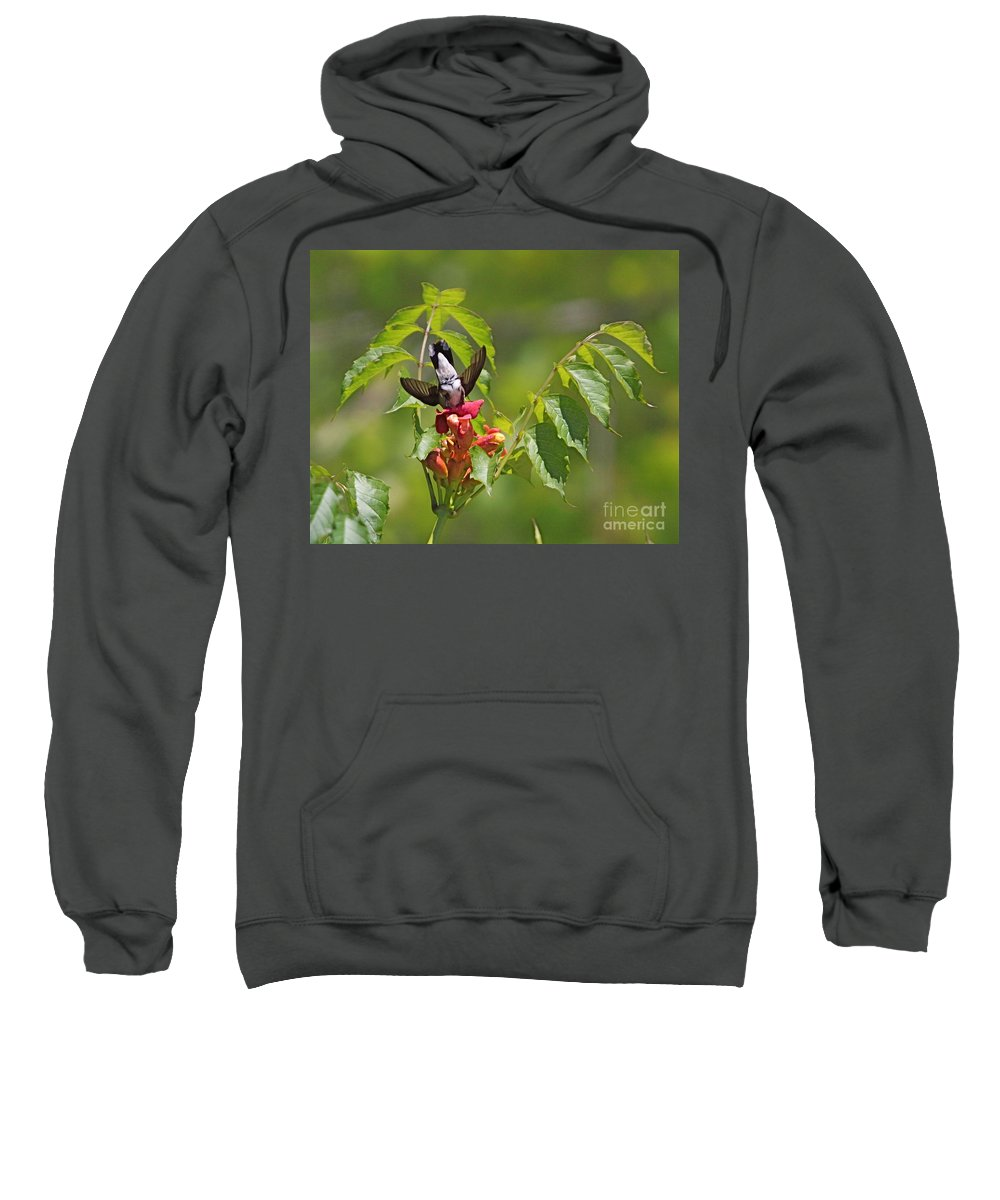 Related Tags: Humming Bird Artwork Sweatshirt featuring the photograph Bottoms Up by Robert Pearson