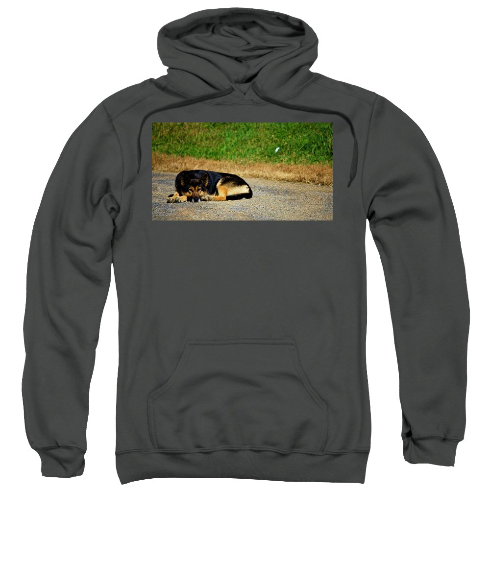 Breaktime Sweatshirt featuring the photograph Breaktime by Teresa Mucha