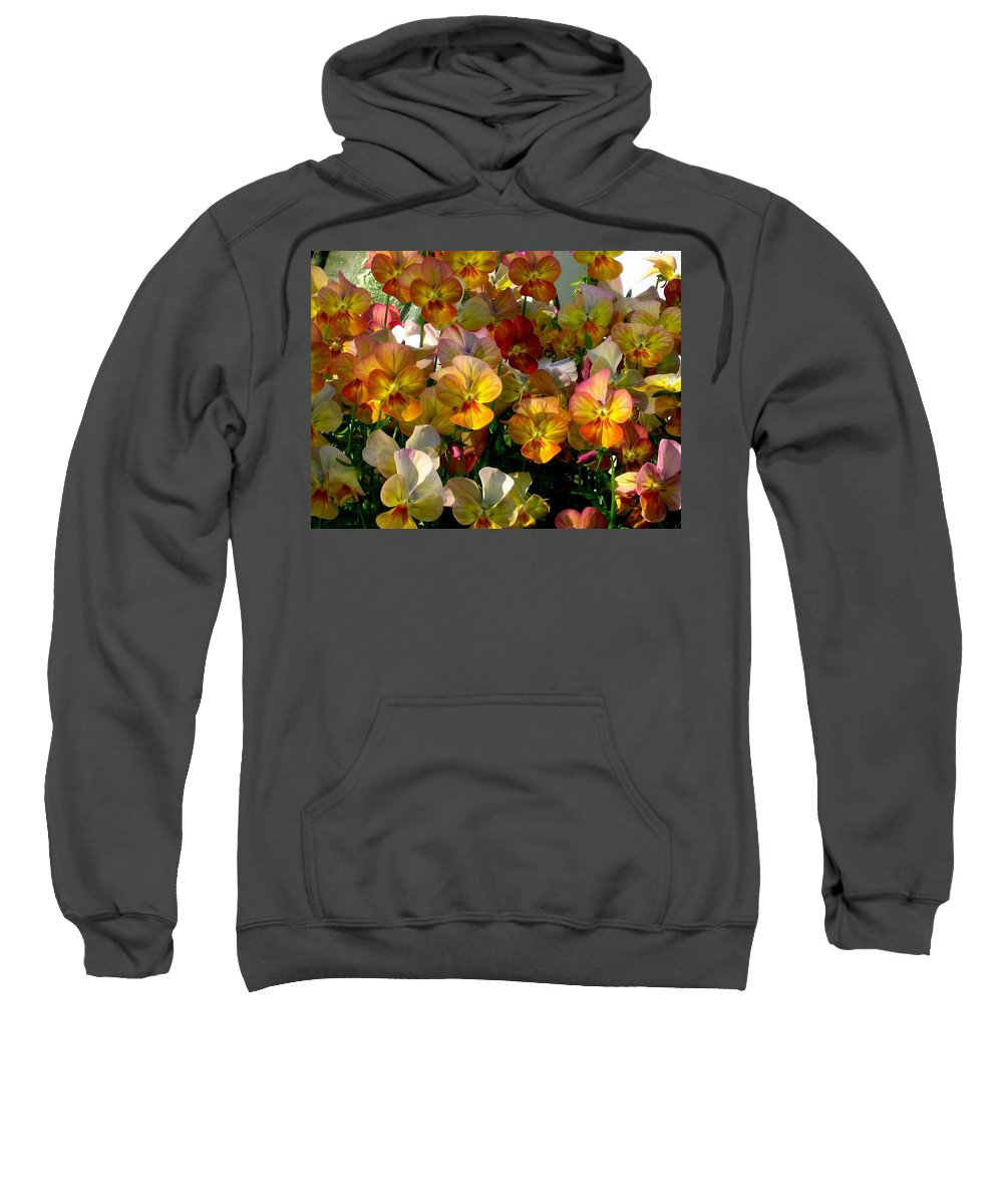 Pansy Sweatshirt featuring the photograph Bright Shining Faces by Marla McFall